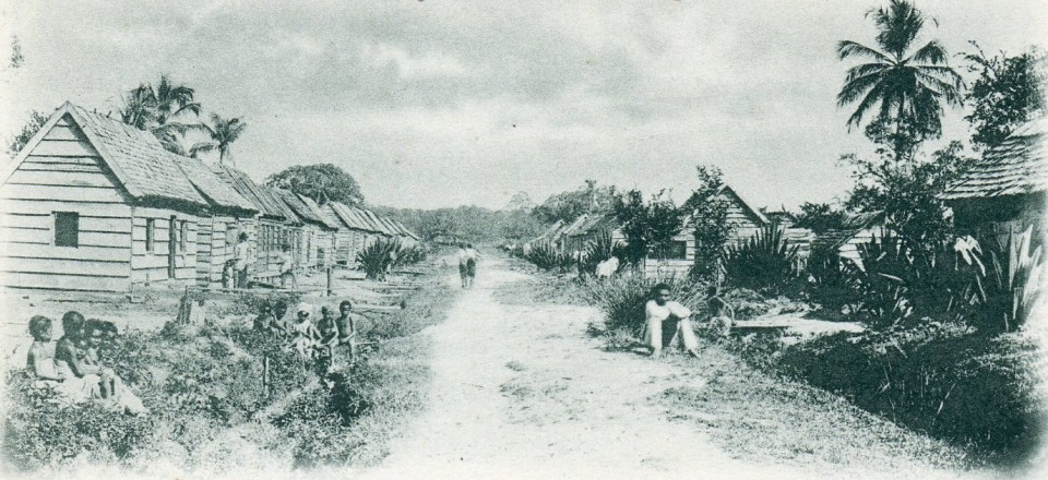 Buku – Bibliotheca Surinamica