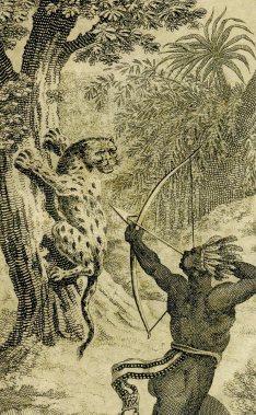 Guyana Denis 1824 indiaan