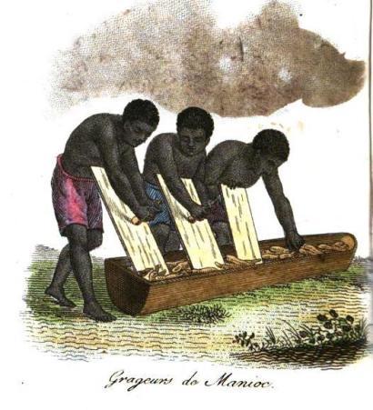 Het raspen van manioc