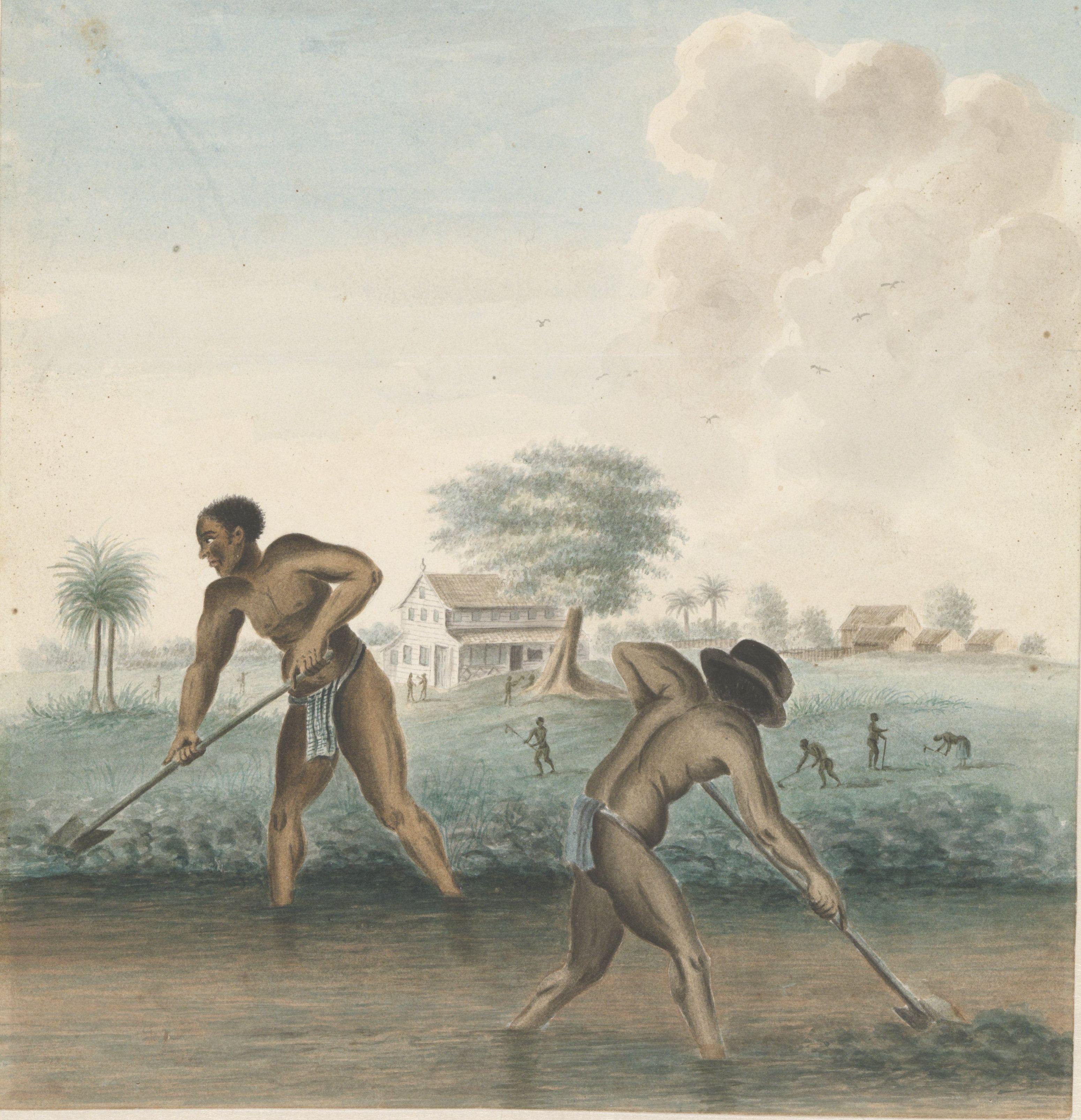 slaven aan het werk