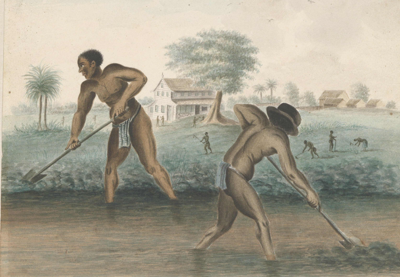 Slaven Rijksmuseum detail